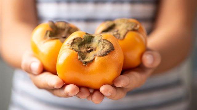 手に持った柿の画像